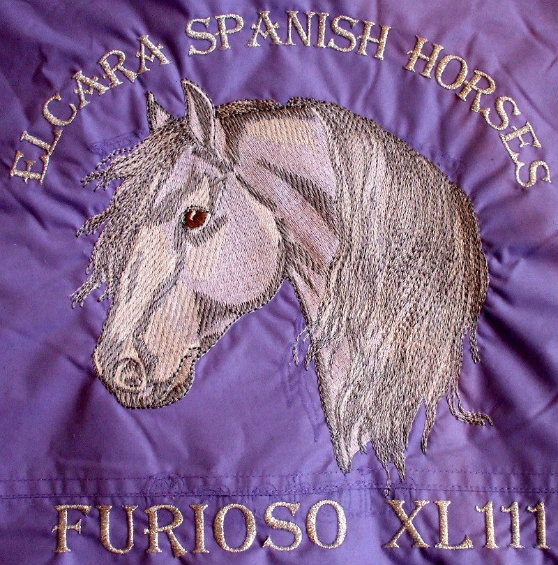 Lastest horse embroidery designs jackets makaroka
